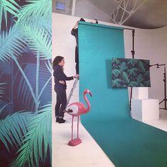 Famous BTS Magazine pick. Ça shoot! #fashion #paris #photography #flamingo #design #mode