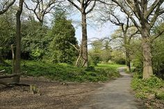 Oxley Woods Shooters Hill South East London England