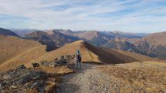 """Unterwegs in den Nockbergen in Kärnten: Im Sommer lädt ein kilometerlanges Wegenetz hinauf auf die Berge der Turracher Höhe, Falkert, Hochrindl und Innerkrems. Für Spaß sorgen die Alpen-Achterbahn """"Nocky-Flitzer"""" auf der Turracher Höhe und auch der Hochseilpark in der Innerkrems, jüngere Besucher bekommen auf der Heidi-Alm am Falkert strahlende Augen. #österreich #austria #schöneorte #wandern #berge #mountains #thingstodoinaustria #nockymountains #wanderninösterreich #autriche #ferien…"""
