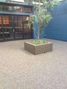epoxy stone floors Pebble Floor, Natural Stone Flooring, Flooring Options, Epoxy, Natural Stones, Carpet, Plants, Floors, Image