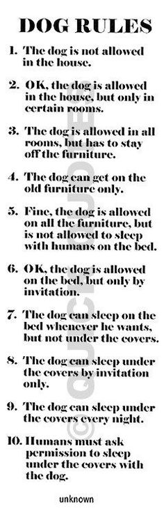 "AHAHAHAHA! Good lord! This is the EXACT progression of my husband's ""Dog Rules"" in this house since I moved in, only there would be another one in the middle of 6 & 7. ""Ok, the dog is allowed in the bed, but only when I'm not home for the night."" We haven't quite made it to #7 (yet!) lol!"