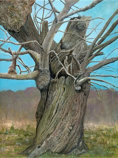 Old Moseley Tree - acrylic on canvas by British artist Diane Holmes. Giclee prints available.