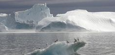 In 2007 Gore Says Arctic Ice Could Disappear By 2013, Earth Gains Record Amount Of Sea Ice In 2013