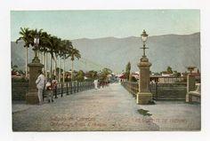Puente de Hierro - Caracas