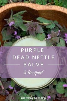 Healing Herbs, Medicinal Plants, Natural Healing, Homeopathic Remedies, Health Remedies, Natural Remedies, Natural Medicine, Herbal Medicine, How To Make Purple