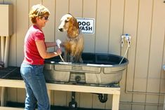 Give your pooch a bath in our dog wash. Pet friendly Pioneer RV Park in Quincy … Give your pooch a bath in our dog wash. Pet friendly Pioneer RV Park in Quincy Plumas County, Ca Pet Shop, Dog Bathing Station, Diy Dog Wash, Portable Dog Kennels, Dog Friendly Hotels, Dog Yard, Up Dog, Dog Shower, Dog Rooms
