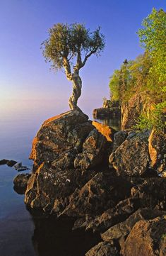Witch Tree Lake Superior on Minnesota's North Shore Drive