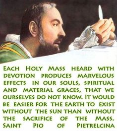 Little Plant of St. Francis: St. Padre Pio Quotes