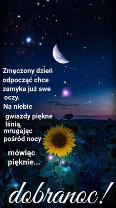 Good Night, Movie Posters, Anna, Nighty Night, Polish, Have A Good Night, Film Poster, Film Posters, Poster