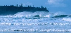 Love Tofino Storm Watching, what a great day.