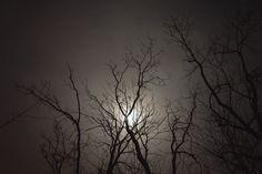 Kentucky at night.