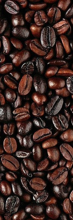 ♪♪ I ❤ Coffee! ✯ ♥ ✯ ♥ I need a C(_) of coffee!! •♥•✿ڿ(̆̃̃• ✯ I ♥ Coffee! ✯ ♥ ♪♪ ❤