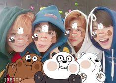 Nct, Bear, Bears