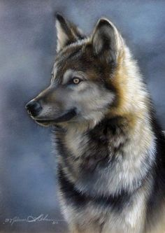 Wolf by artist REBECCA LATHAM.                                                                                                                                                                                 Plus