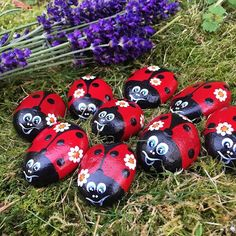 #rocks #stones #paintedrocks #paintedstone #rockart #stoneart #rockcollection #stonecollection #loveofnature #mariehøne #ladybug #ladybugs #lavender #lavendel #gardenart #gardendecor #homedecor #homedecoration #diy #artsyfartsy #originalart #hobby #mindfulness #denmark #autumn #myart #seatreasures #pebbles #beachfinds #beachlife