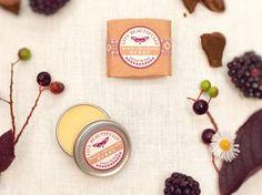 Natural Lip Balm Mini Variety Pack