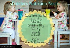 Toddler Nutrition Needs Age 1-3 | In Wealth & Health