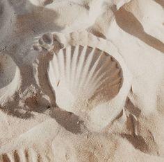 Cream Aesthetic, Beach Aesthetic, Summer Aesthetic, Deco Surf, Photo Polaroid, Foto Instagram, Instagram Travel, Instagram Design, Beach Babe