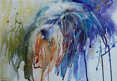 Taffy, Bearded Collie, by Jean Haines. Watercolours With Life: January 2010