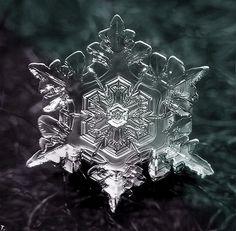Snowflake closeup photo 4