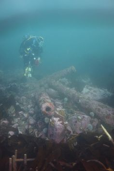 In 2013 Wessex Archaeology was commissioned by English Heritage (now Historic England) to revisit the wreck of a Dutch ship that was lost on the notoriously dangerous rocks of the Farne Islands site and update the survey. Now realistic 3D models of parts of the site have been created and put online.