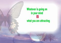 What are you attracting?  Stay positive!