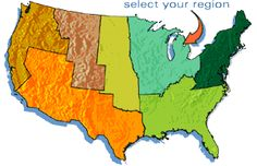 Songs and calls of  over 500  North  American  birds…
