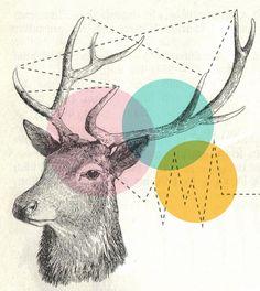 ciervo geometrias