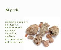 Myrrh: good for antiseptic needs, pain relief and swelling of cuts, wounds or bruises.  Can be applied on open wounds. Stimulates the immune system and blood circulation, promotes tissue regeneration.  Astringent and analgesic propertiess, eases coughing/tonsillitis and other infections.
