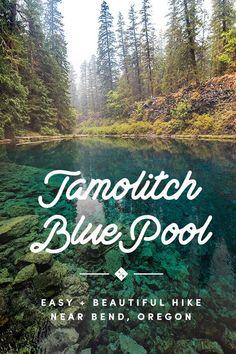 Tamolitch Blue Pool in Oregon Oregon Road Trip, Oregon Trail, Oregon Coast, Hiking Places, Places To Travel, Places To Go, Hiking Trails, Blue Pool Oregon, Blue River Oregon