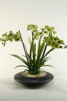 Vanda Orchids in Planter
