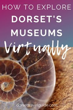 Dorset Museums with Virtual Tours - how to explore some of Dorset's best museums without leaving your house! #dorset #england #museums