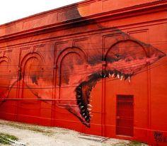 by Shark Toof in St.Petersburg, FL, 9/15 (LP)