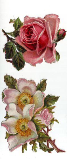 Vintage Victorian Era Flowers die cut scrap 1800s