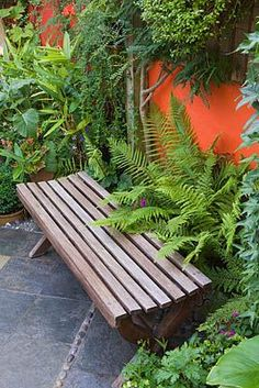 KARLA NEWELL GARDEN, BRIGHTON: SMALL TOWN GARDEN - COURTYARD WITH WOODEN BENCH, ORANGE PAINTED WALL AND FERNS