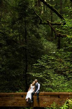 Google Image Result for http://andihatchblog.com/wp-content/uploads/2011/04/Muir-Woods-Marin-wedding.jpg