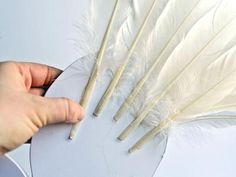 How to Make Feathered Angel or Fairy Wings : Decorating : Home & Garden Television Angel Wings Costume, Diy Angel Wings, Diy Wings, Feather Angel Wings, Girls Angel Costume, Christmas Angels, Christmas Crafts, How To Make Wings, Diy Angels