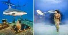 Модель устроила подводную фотосессию с акулами без спецснаряжения - http://wuzzup.ru/model-ustroila-podvodnuyu-fotosessiyu-s-akulami-bez-spetssnaryazheniya.html