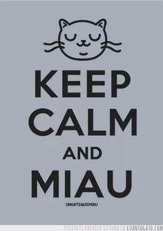 Keep calm and miau
