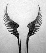 Valkrie Wings