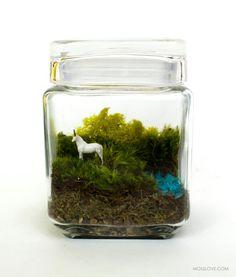 Unicorn Spotting // Medium // Terrarium door MossLoveTerrariums