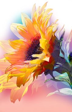 Pretty sunflower painting inspiration, would be lovely watercolor, acrylic or oil painting. Watercolor Sunflower, Sunflower Art, Pastel Watercolor, Sunflower Paintings, Painting Flowers, Paintings Of Sunflowers, Watercolor Video, Arte Floral, Painting Inspiration