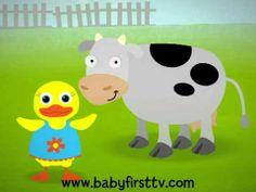 English Corner Time: Tillie the Duck Teaches Animals on BabyFirstTV.com http://englishcornertime.blogspot.com