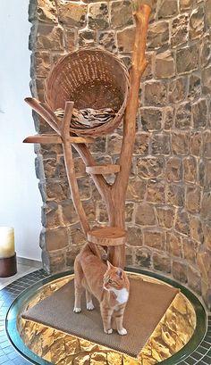 Katze: Schlafplätze - Kratzbaum, Katzenbaum, Katzenhöhle -Natur- Katze - ein Designerstück von Nachhaltigkeit bei DaWanda