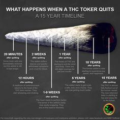 What Happens When You Quit Smoking Weed Timline - Marijuana Memes