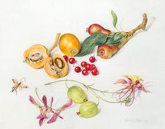 WILD THING: Beverly Allen