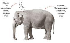 Rider and Elephant. The Happiness Hypothesis, Jonathan Haidt 이성적인 기수와 감성적인 코끼리가 함께 조화를 이루어 움직여야 변화가 온다.
