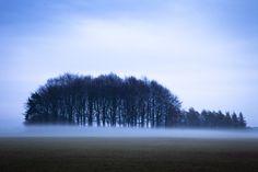 Tatton Park, Cheshire, in the winter mist.