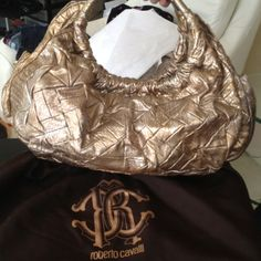 Roberto Cavalli  Brand New!! Roberto Cavalli- Brand NewNever Worn! Large..zip closer..pocket inside & 2 on outside. Carry or shoulder..handles r leather & metal. Bronzy, gold, sliver. Not included in bundle price❗️ Roberto Cavalli Bags