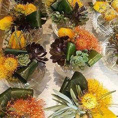 A glimpse of the corporate function I did at the NH The Lord Charles Hotel a couple of weeks ago. Keeping it modern but local with succulents, pin cushions and fynbos in glass fishbowls. ...#CapeTownFlorist #corporateevents #capetownsouthafrica #bulbflowersct #happyheart #lovelocal #proteas #pincushions #fynbos #capetownflora